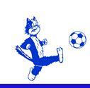 Chaton Footballeur d'Estrablin