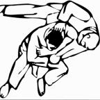 Comité de l'Isère de Judo
