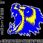 Chamrousse Hockey Club