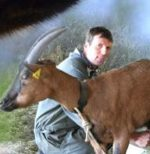 La chèvrerie du Chatelard