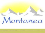 Montanea