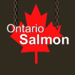 Restaurant Canadien Ontario Salmon