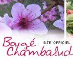 Site officiel de Bougé Chambalud (Isère)