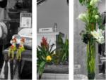 Le Tournesol | fleuriste à Allevard