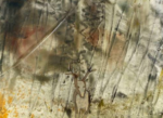 Isabelle Baeckeroot – Fusions de verre, pièces uniques et décor