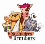 Clinique vétérinaire des Bruniaux aux Abrets