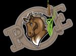 Poney Club de l'Etang – Vaulnaveys