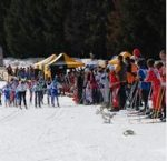 Chartreuse ski de fond