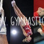ALV Voiron Gymnastique