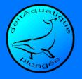 Deltaquatique Plongée – Pont de Claix