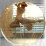 Association Impulsion… Danse à Eybens