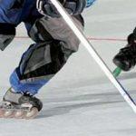 Lionceaux de Sassenage – Roller hockey